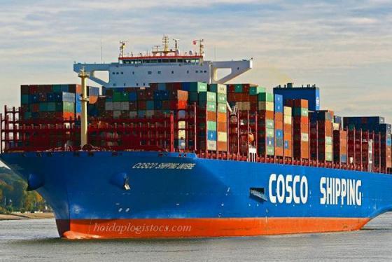 Có thể bạn chưa biết: Top 10 hãng tàu lớn nhất thế giới